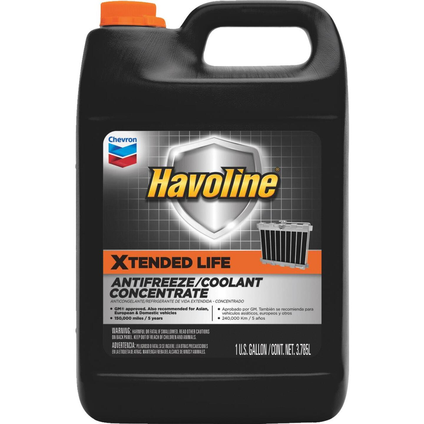Havoline Xtended Life Gallon Concentrate -34 F to 228 F Automotive Antifreeze Image 1